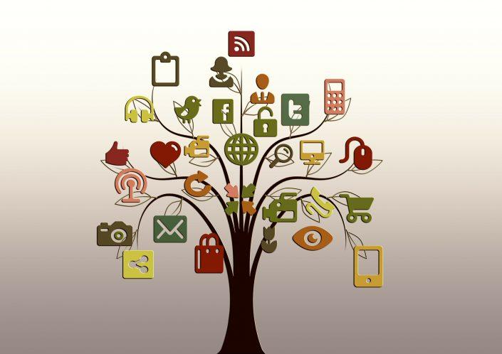 Optimisez votre visibilité sur les réseaux sociaux